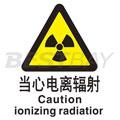 中英文警示类标识(当心电离辐射)